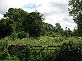 Brimpsfield Castle - geograph.org.uk - 878492.jpg
