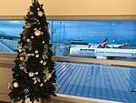 Brisbane Airport Domestic Terminal Christmas trees in 2016.jpg