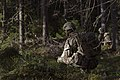 British troops train to fight in Norway's forests MOD 45164796.jpg