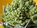 Broccoli DSCN4356.jpg