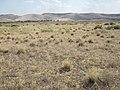 Bruneau Dunes former sagebrush steppe (9673342505).jpg