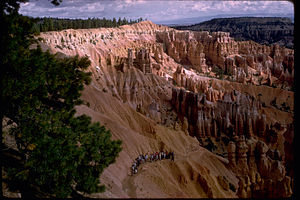 Bryce Canyon National Park BRCA0642.jpg