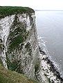 Buckton Cliffs - geograph.org.uk - 813714.jpg