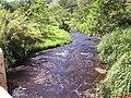 Córrego São Francisco ou da Divisa entre Jardinópolis e Brodowski - panoramio.jpg