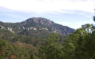 Guadalupe y Calvo Municipality - The Cerro Mohinora