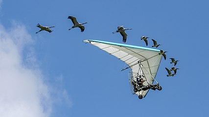 CH.VD.Bex 2007-09-02 Airshow 287 16x9-R 5120x2880.jpg