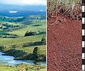 CSIRO ScienceImage 4284 Red Ferrosol soil profile in the Atherton Tablelands of north Queensland.jpg