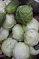 Cabbage 001.jpg