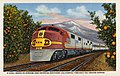 California - Santa Fe Streamliner Entering Southern California, Through the Orange Groves (NBY 431450).jpg