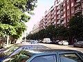 Calle de Goya - panoramio - Ricardo Ricote Rodrí… (4).jpg