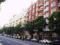 Calle de Goya - panoramio - Ricardo Ricote Rodrí… (5).jpg