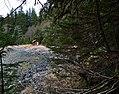 Camping Cove Cabin (5215872287).jpg