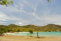 Caneel Bay Scott Beach 4.jpg