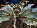 Carnival of cultures Berlin 2005 c.jpg
