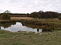 Carr Pond - geograph.org.uk - 588073.jpg