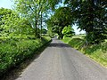Castletown Road, Ballyrickard - geograph.org.uk - 1900575.jpg