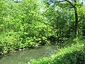 Central Park May 2019 43.jpg