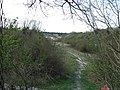 Chalk Pit near Cherry Hinton - geograph.org.uk - 805799.jpg