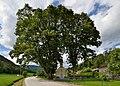 Chapel at Ponigl between trees.jpg
