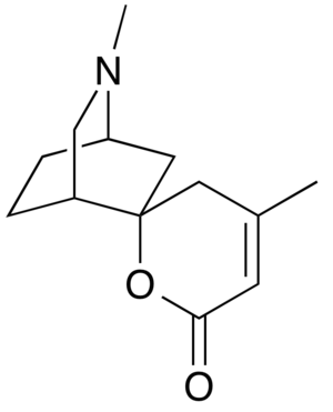 Dioscorine - Image: Chemical structure of dioscorine
