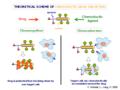 Chemotactic drug-targeting.png