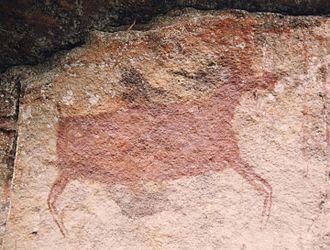 Chiribiquete National Park - Image: Chiribiquete petroglyph 1