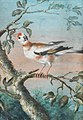 Christoph Ludwig Agricola - Ein Vogel auf einem Ast.jpg