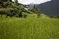 Chuba, Punakha, Bhutan (14).jpg