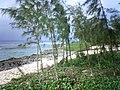 Chulu Beach - Tinian - panoramio - kajikawa (1).jpg
