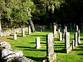 Churchyard at St Mary's, Eskadale - geograph.org.uk - 1518113.jpg