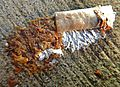 Cigarette butt on wet sidewalk after heavy rain Mégot 02.jpg