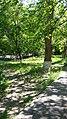 Circular-Park, Yerevan 15.jpg