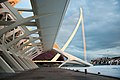 Ciudad de las Artes y de las Ciencias - panoramio - Raffaele Nicolussi (7).jpg