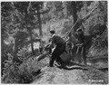 Civilian Conservation Corps in Idaho, Boise National Forest - NARA - 195826.tif
