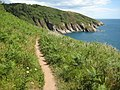 Coast path above Pudcombe Cove-geograph-2470975-by-Philip-Halling.jpg