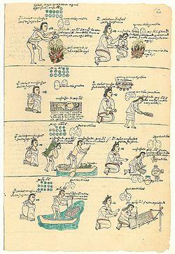 Educación Azteca Wikipedia La Enciclopedia Libre