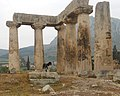 Corinth, Greece Dog (6995008485).jpg