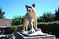 Cougar mountain zoo 0274.JPG