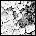 Cracks - Flickr - Stiller Beobachter.jpg