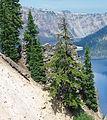 Crater Lake August 2013 - exterior of Sinnot.JPG