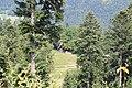 Creux du Van - panoramio (7).jpg