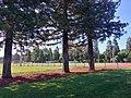 Crittenden School Park.jpg