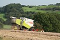 Cullompton - end of the harvest - geograph.org.uk - 968512.jpg