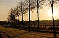 Dülmen, Hausdülmen, Wallgarten -- 2015 -- 0223-7.jpg
