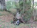Dümmer Sude vor Mündung in Dümmer See 2013-10-06 20.JPG