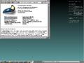 DSmallLinux.PNG