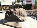 Dampier Red Dog, Western Australia.jpg