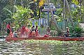 Dans les Backwaters (Kerala, Inde) (13719444465).jpg