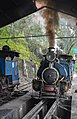 Darjeeling Himalayan Railway,toy train (8).jpg