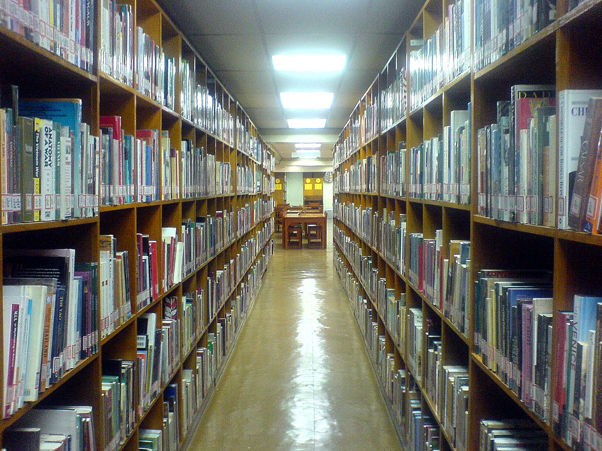 6 Things I Learned From Working In A Public Library